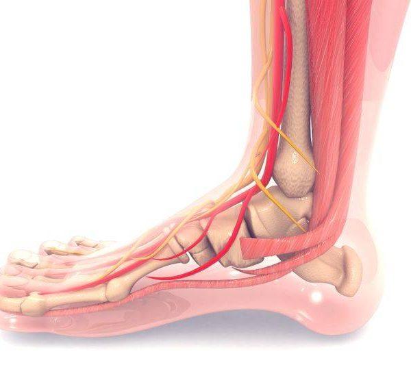 chirurgia ricostruttiva della caviglia