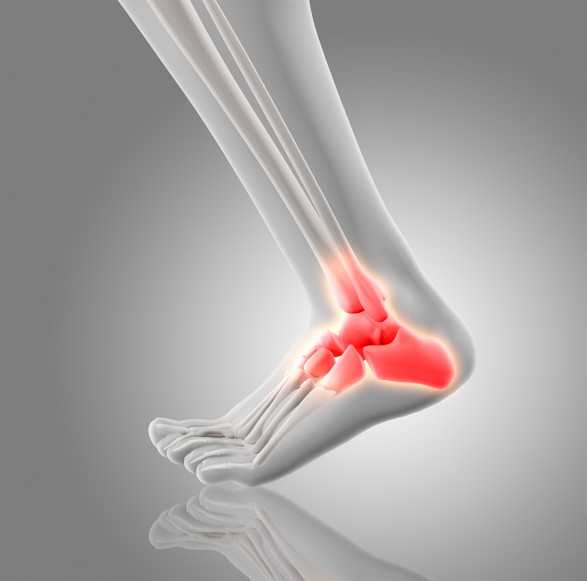 PIEDE E CAVIGLIA Dottor Attilio Basile Specializzato nell'Ortopedia del piede e della caviglia reperibile al San Camillo Forlanini di Roma e presso la Clinica Pio XI di Roma